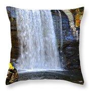 Looking Glass Falls Throw Pillow by Susan Leggett