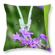 Looking Into Butterfly Eyes Throw Pillow