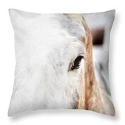 Looking Into Her Soul Throw Pillow