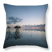 Looking Out To Sea Past Mangrove Shoots Throw Pillow