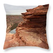 Looking Past Natures Window Throw Pillow