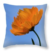 Looking Sideways Throw Pillow