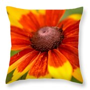 Looking Susan In The Eye Throw Pillow