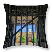 Looking Through The Bars Throw Pillow