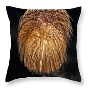 Lopez Island Fireworks 1 Throw Pillow