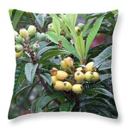 Loquats In The Rain Throw Pillow