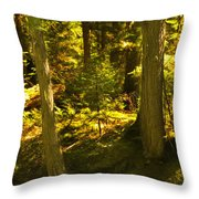 Lord Of The Rings Glacier National Park Throw Pillow