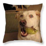 Lord Please Send Me A New Whole Ball Throw Pillow