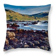 Lost Coast In Winter Throw Pillow