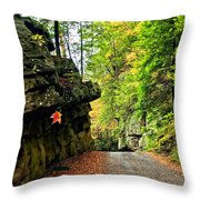 Lost In Pennsylvania 2 Throw Pillow