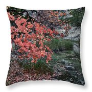Lost Maples Fall Afternoon Throw Pillow