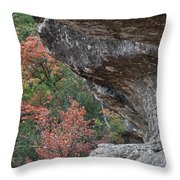 Lost Maples Fall Scene Throw Pillow