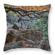 Lost Maples Hiking Trail Throw Pillow