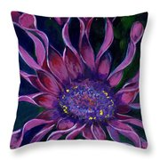 Losteospermum Throw Pillow