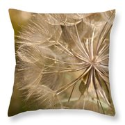 Lots Of Wishes Throw Pillow