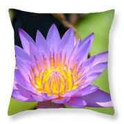 Lotus Aglow Throw Pillow