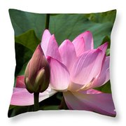 Lotus Bud--here Is How You Do It Dl065 Throw Pillow