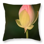 Lotus Bud Throw Pillow
