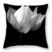Lotus Bw Throw Pillow