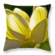 Lotus Flower Throw Pillow by Heiko Koehrer-Wagner