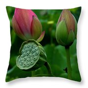 Lotus-generations IIi Dl031 Throw Pillow