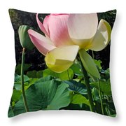 Lotus Lily Standing Tall Throw Pillow