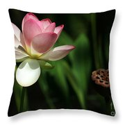 Lotus Opening To The Sun Throw Pillow