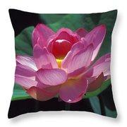 Lotus--secrets Within 24k Throw Pillow
