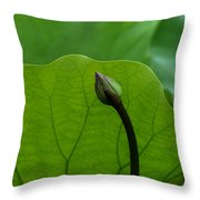 Lotus-sheltering The Future Dl032 Throw Pillow