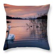 Lough Leane, Killarney National Park Throw Pillow