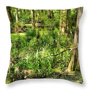Louisiana Wetland Throw Pillow