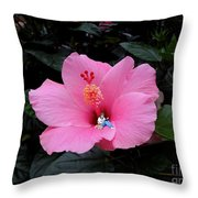 Lounging In A Hibiscus Throw Pillow by Renee Trenholm