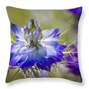 Love In The Mist - Nigella Throw Pillow