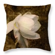 Love Letter Viii Cape Jasmine Gardenia Throw Pillow by Jai Johnson