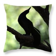 Love Song Throw Pillow by Elizabeth Hart