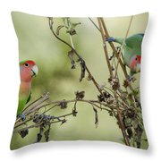 Lovebirds At Play  Throw Pillow