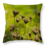Loveliness In Death Throw Pillow