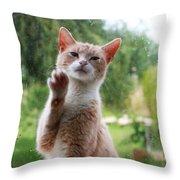 Lovely Cat Throw Pillow