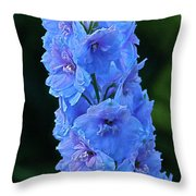 Lovely Larkspur Blue Throw Pillow