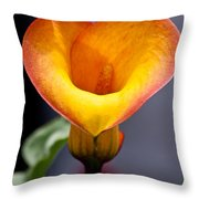 Lovely Lily Throw Pillow
