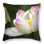 Lovely Lotus Throw Pillow by Living Color Photography Lorraine Lynch
