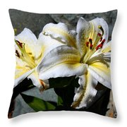 Lovely Sunlit Lily Throw Pillow