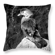 Lovely To Look At In Black And White                                                                 Throw Pillow