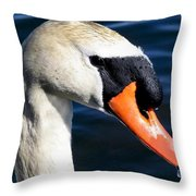 Lovey Throw Pillow