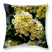 Loving Yellow Throw Pillow