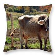 Low Cow Throw Pillow
