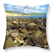 Low Tide At Gaviota Throw Pillow