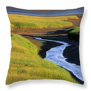 Low Tide At Sunset, Minas Basin, Kings Throw Pillow by Ron Watts