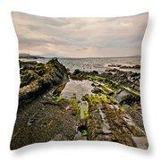 Low Tide Rocks Throw Pillow