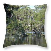 Lowcountry Landscape II Throw Pillow